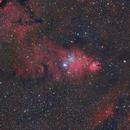 NGC 2264,                                Craig