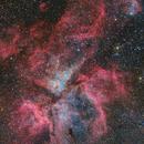 The Eta Carina Nebula,                                Toshiya Arai