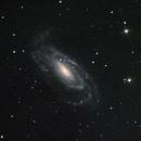 NGC 5033,                                Christoph Zechner