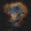 NGC 7822 - Cederblad 214,                                Idir Saci