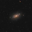 M63 Sunflower Galaxy,                                Stan Smith