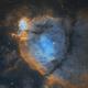 NGC896 Fish Head,                                Chen Wu