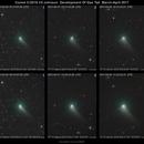 "Comet C/2015 V2 Johnson - Development of Gas Tail -  March-April 2017,                                Sebastian ""BastiH..."