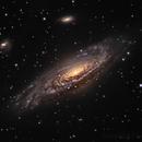 NGC 7331,                                sydney