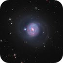 Messier 77, Barred Spiral Galaxy in Cetus,                                José Joaquín Pérez