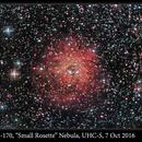 Sh2-170, Small Rosette Nebula, UHC-S, 7 Oct 2016,                                David Dearden