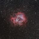 Rosette Nebula,                                Johannes Grimm