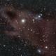 LDN 1235 The Dark Shark Nebula,                    Randal Healey