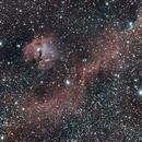 IC2177/The Seagull Nebula,                                Ray Heinle