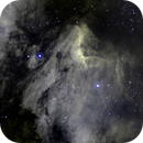Pelican IC 5067 in HA (L) & OIII (B),                                  Dave Bloomsness