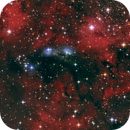 NGC 6914,                                Phil Brewer