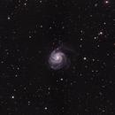 M101 - The Pinwheel Galaxy,                                Michel Makhlouta