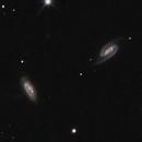 Arp 1 (NGC 2857) and Arp 285 NGC (2854 and NGC 2856),                                lowenthalm