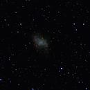 M1 - Crab Nebula,                                Marty Spallone