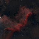 Cygnus Wall HOO,                                Eric Cauble