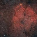 IC 1396 & The Elephant's Trunk Nebula,                                ThomasR