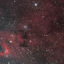 Cave Nebula,                                Mark