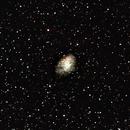 M1 - Crab Nebula,                                Holger Meißner
