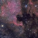 NGC7000,                                Thibault Cazaurang