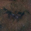 Loch Ness Monster Dark Nebula,                                Joe Beyer