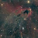 Boogie Man Nebula (LDN-1622),                                Michele Trungadi