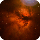 The Flame Nebula,                                David Redwine