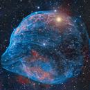 SH-308 - The dolphin's head Nebula,                                Benjamin Lefevre