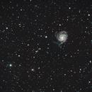 M101 / NGC5457, NGC5422, NGC5443, NGC5475, NGC5485,                                Stefano Zamblera