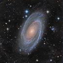 Bode's Galaxy (M81) - Deeper,                                KuriousGeorge