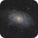 M33 Triangulum Galaxy,                                Dawn Lowry