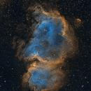 IC1848 SHO,                                Astrovetteman