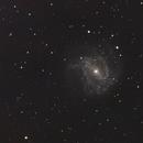 M83 Southern Pinwheel Galaxy,                                  Wilson