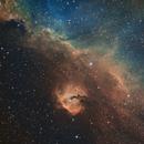 Seagull nebula in SHO (IC2177),                                jahnpahwa