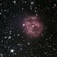 C19 - IC5146,                                Vinceniello