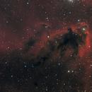 LDN 1622 Boogie man nebula,                                Andreas Zirke