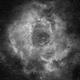 Rosette Nebulae,                                Eric Solomonson