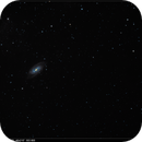 NGC 2903 and Friends,                                Jacob Bers