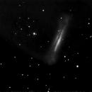NGC 3628,                    Ian Papworth