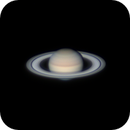 Saturn from Florida,                                Frank Kane