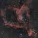 Heart Nebula,                                Rad_Astra
