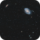 M81 M82 NGC3077,                                Florian Drews