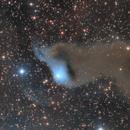 Wolf's Cave Nebula,                                Steve Milne