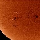 The Sun - December 5, 2013,                                Onur Atilgan