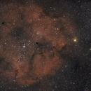 Elephant's Trunk Nebula (IC1396),                                Christian Côté