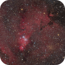 NGC 2264 and IC 2169,                                Jenafan