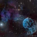 Jellyfish Nebula IC443,                                William Chan