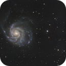 M101 color,                                Maxime Delin