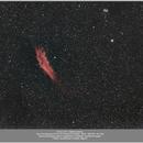 NGC 1499 California Nebula, 20171122,                                Geert Vandenbulcke
