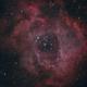 The Rosette Nebula,                                Gabe Shaughnessy