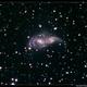 NGC 2207,                                Roger Groom
